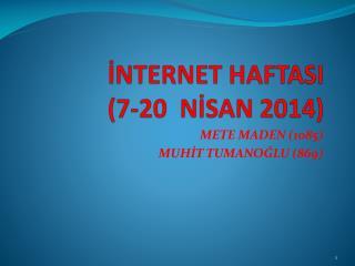 İNTERNET HAFTASI (7-20  NİSAN 2014)