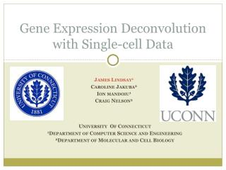 Gene Expression Deconvolution with Single-cell Data