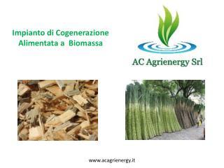 Impianto di Cogenerazione Alimentata a  Biomassa