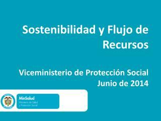 Sostenibilidad y Flujo de Recursos  Viceministerio de Protección Social Junio de 2014