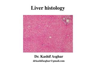 Liver histology
