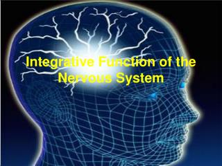 Integrative Function of the Nervous System