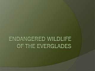 Endangered  Wildlife  of the Everglades