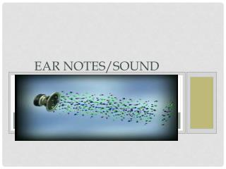 Ear Notes/ SoUND