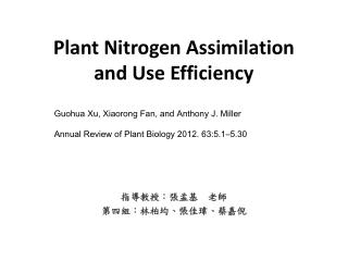 Plant Nitrogen Assimilation and Use Efficiency