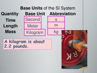 Base Units  of the SI System