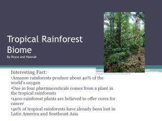 Tropical Rainforest  Biome By Bryce and Hannah