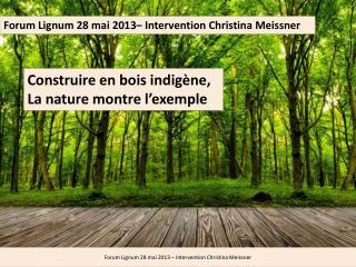 Forum  Lignum  28 mai 2013–  Intervention Christina  Meissner