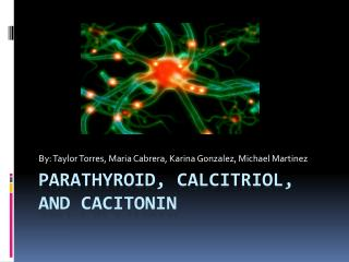 Parathyroid, Calcitriol, and cacitonin