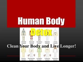 Human Body  Detox