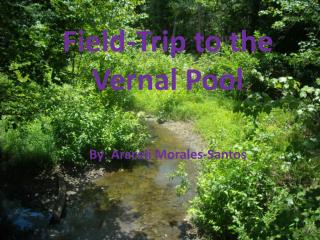 Field-Trip to the Vernal Pool