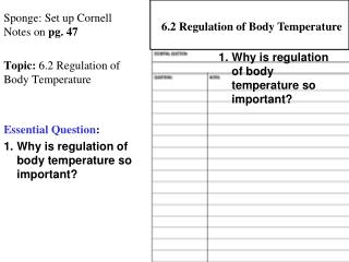 Sponge: Set up Cornell Notes on  pg. 47 Topic:  6.2 Regulation of Body Temperature