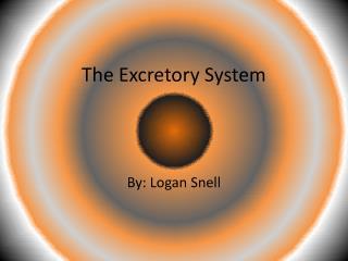 The  E xcretory  S ystem