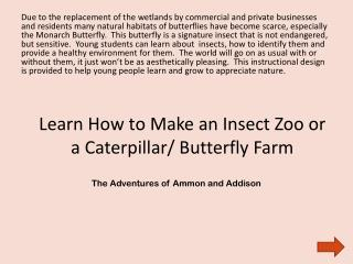 Learn How to Make an Insect Zoo or a Caterpillar/ Butterfly Farm