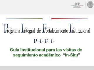 """Guía  Institucional  para las visitas de  seguimiento académico   """"In-Situ"""""""