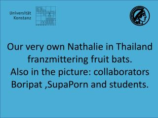 Our very own  Nathalie in Thailand  franzmittering fruit bats .