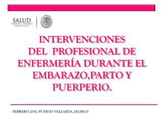 INTERVENCIONES  DEL   PROFESIONAL DE ENFERMER�A DURANTE EL EMBARAZO,PARTO Y PUERPERIO.