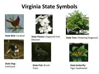 Virginia State Symbols