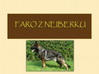 Faro z  Neiberku