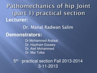 Pathomechanics of hip Joint (part 1) practical section
