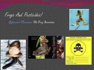 Frogs And Pesticides!
