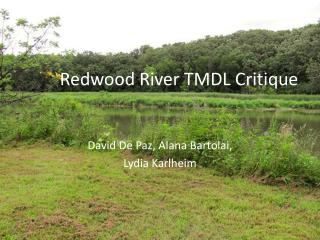 Redwood River TMDL Critique