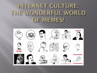 Internet Culture: The Wonderful World of Memes!