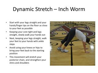 Dynamic Stretch – Inch Worm