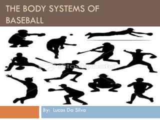 The Body Systems of Baseball