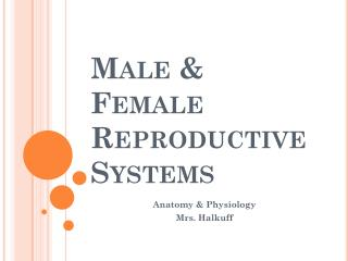 Male & Female Reproductive Systems