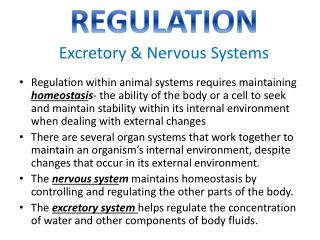 REGULATION Excretory & Nervous Systems