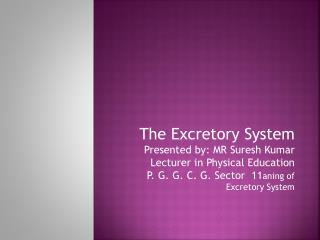Organs of Excretory System, Their Structure And Functions Kidneys                Two