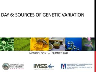 DAY 6: Sources of genetic variation