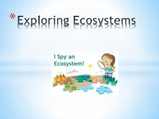 Exploring Ecosystems