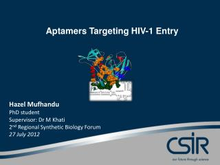 Aptamers  Targeting HIV-1 Entry