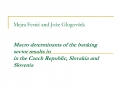 Mejra Festic and Jo e Glogov ek    Macro determinants of the banking sector results in in the Czech Republic, Slovakia a