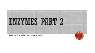 Enzymes Part 2