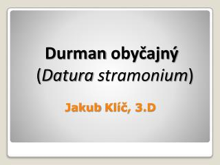 Jakub  Klíč, 3.D