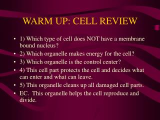 WARM UP: CELL REVIEW