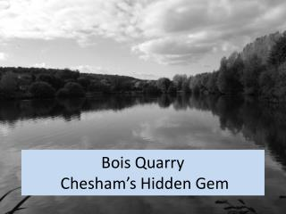 Bois Quarry  Chesham's Hidden Gem