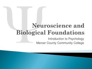 Neuroscience and Biological Foundations