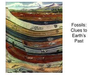 Fossils: Clues to Earth's Past