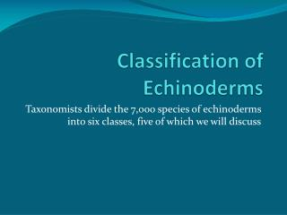 Classification of Echinoderms