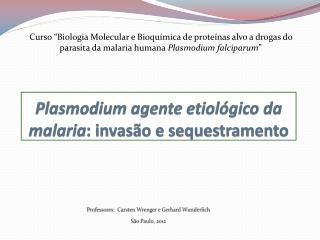 Plasmodium  agente etiológico da malaria : invasão e  sequestramento