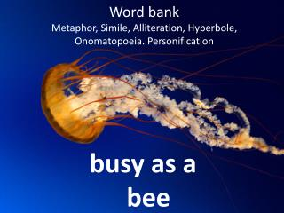 Word bank Metaphor, Simile, Alliteration, Hyperbole, Onomatopoeia. Personification