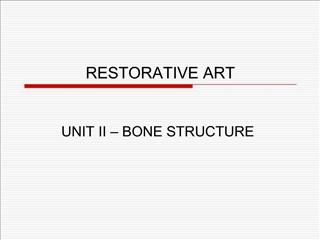 RESTORATIVE ART