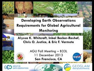 Developing Earth Observations Requirements for Global Agricultural Monitoring