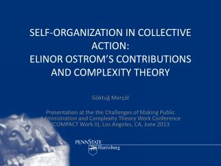 SELF-ORGANIZATION IN COLLECTIVE ACTION:  ELINOR OSTROM'S CONTRIBUTIONS AND COMPLEXITY THEORY