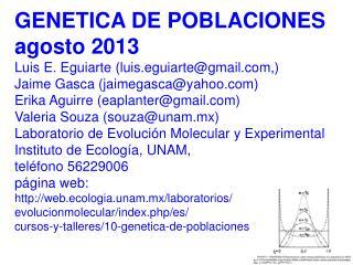GENETICA  DE  POBLACIONES agosto 2013 Luis  E. Eguiarte  ( luis.eguiarte@gmail ,)