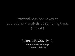Practical Session: Bayesian evolutionary analysis by sampling trees (BEAST)